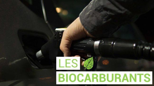 Le biocarburant, bonne idée ou pas ?